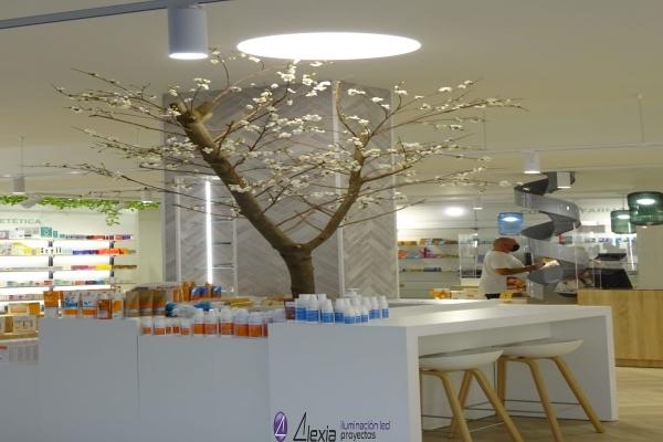 farmacia-sanchez-gijon-18A5332768-12D6-192D-D4D7-0D3C66B456B4.jpg